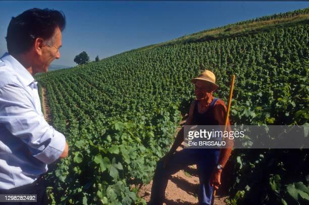 Le négociant en vin, vigneron et homme d'affaires Georges Duboeuf dans un vignoble en 1996 à Romanèche-Thorins, France.