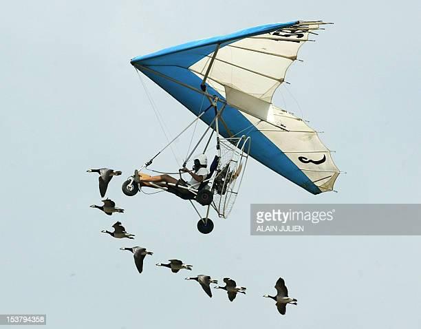 Le pilote d'ULM Christian Moullec se produit avec des oiseaux Bernaches Nonnettes le 25 juin près de Reims lors d'un meeting aérien organisé par la...