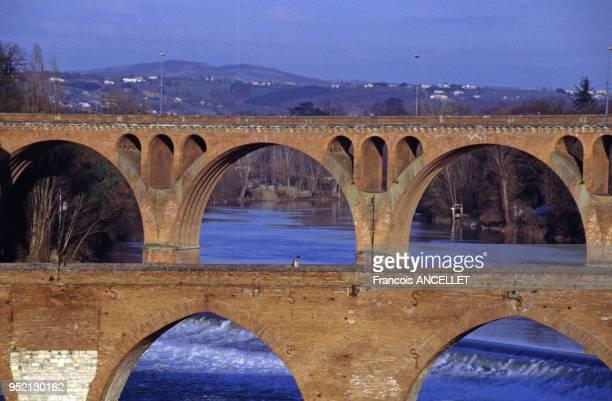 Le pont Vieux et le pont Neuf d'Albi, au-dessus du Tarn, en 1996, France.
