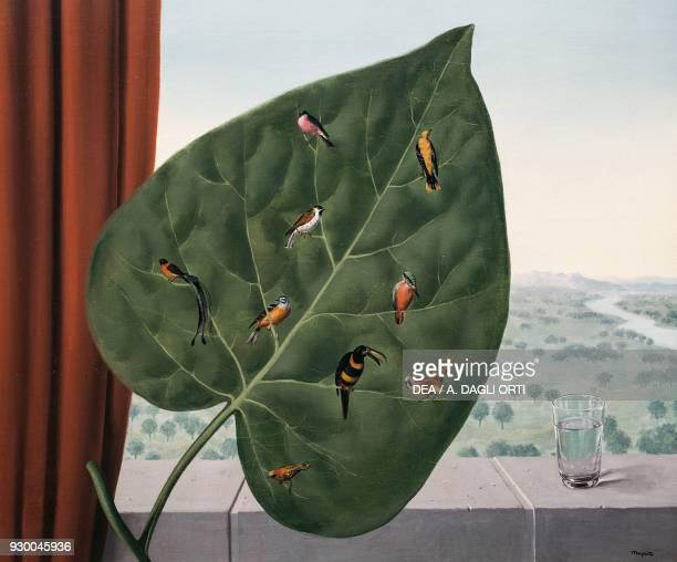 Le regard interieur by Rene Magritte oil on canvas 595x725 cm