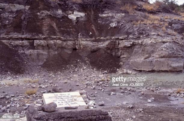 Le site archéologique de la découverte du Paranthropus boisei dans les gorges d'Olduvai Tanzanie