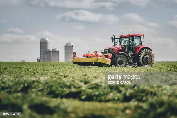 le tracteur dans le champs - tiller stock photos and pictures