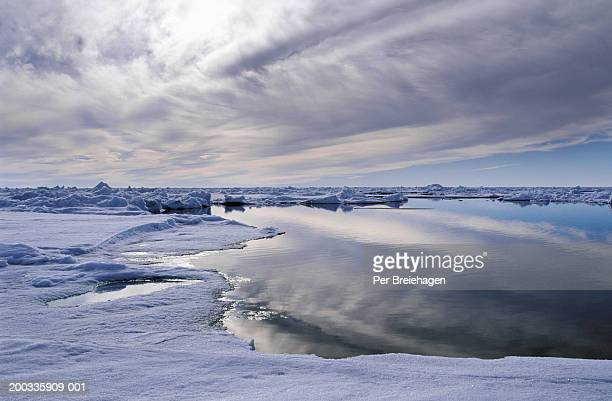 lead (open water) at north pole, arctic ocean, summer - north pole stock pictures, royalty-free photos & images