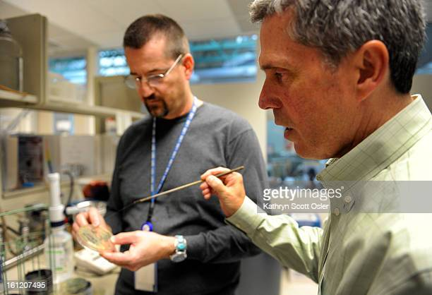 Lead Food Lab Scientist Skip Gossack left and Dr Hugh Maguire Program Manager Microbiology Laboratory Services Division review the petri dishes...