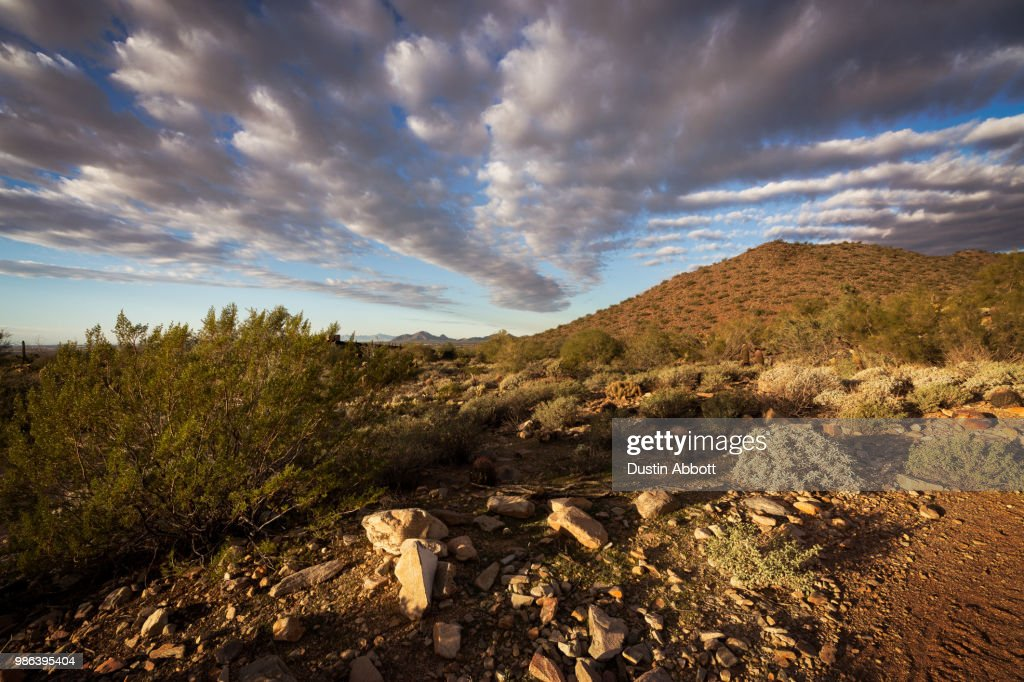 Lead Me to Camelback : Stock Photo
