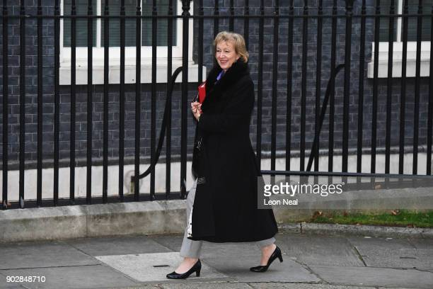 Leader of the Commons Andrea Leadsom arrives as government ministers attend the first Cabinet meeting of the year at 10 Downing Street on January 9...