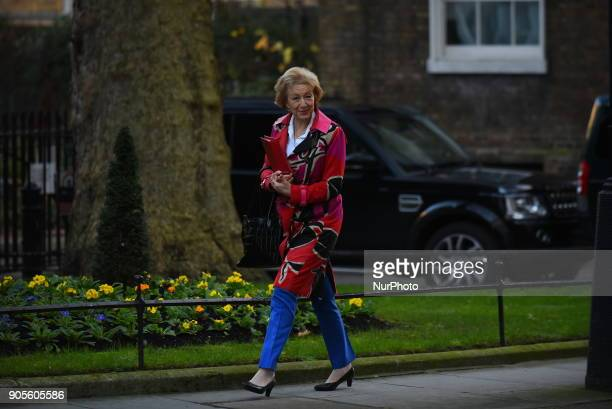 Leader of the House of Commons Lord President of the Council Andrea Leadsom arrives at Downing Street as to attend the weekly Cabinet meeting London...