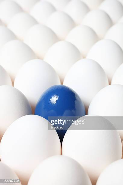 leadership - dirty easter stock pictures, royalty-free photos & images