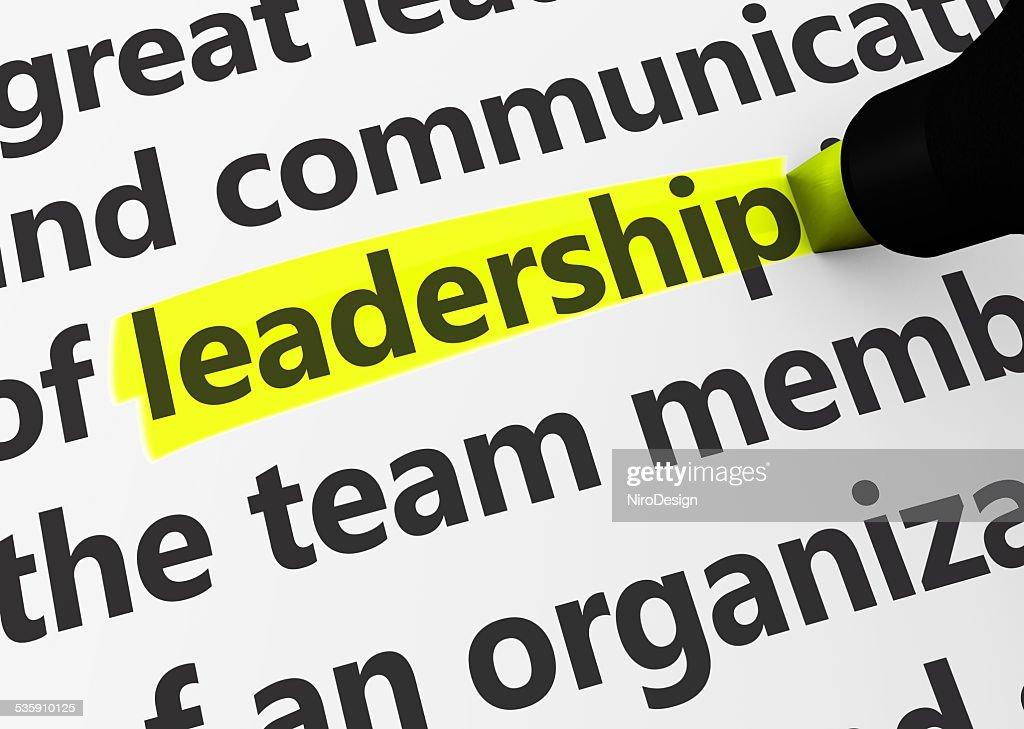 Leadership : Stock Photo