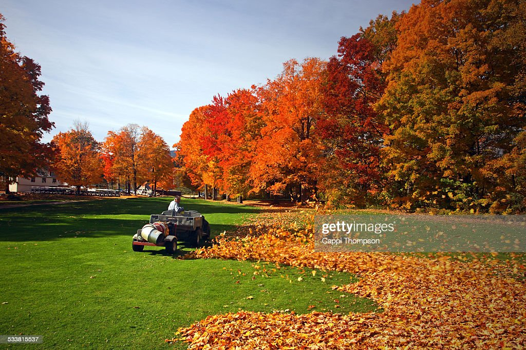 Leaf blower action on a golf course : Foto stock