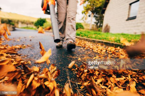 leaf blower clearing driveway - autumn stock pictures, royalty-free photos & images