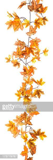 leaf garland - garland stock pictures, royalty-free photos & images