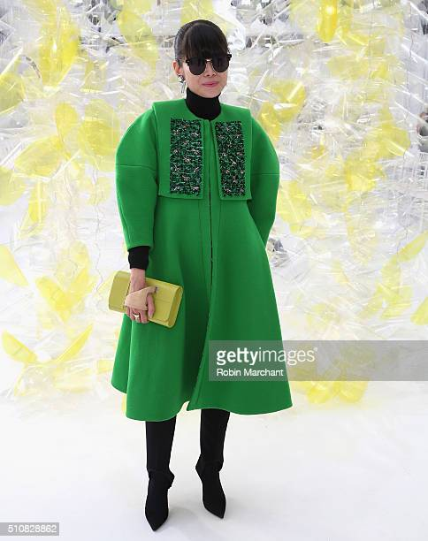 Leaf Greener attends Delpozo during Fall 2016 New York Fashion Week at Pier 59 Studios on February 17 2016 in New York City