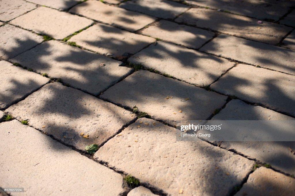 Leaf shadows on cobbled street : Stock Photo