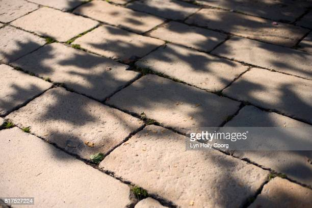leaf shadows on cobbled street - lyn holly coorg stock pictures, royalty-free photos & images