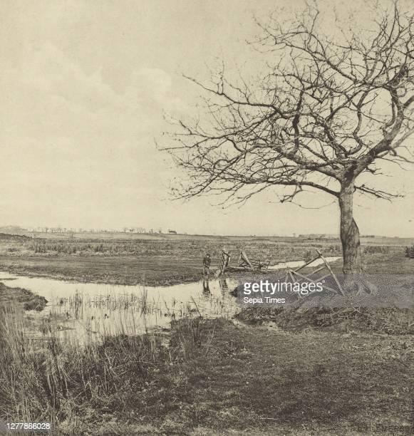 Leafless March. Suffolk; Peter Henry Emerson ; London, England; 1888; Photogravure; 24.4 x 23.5 cm .