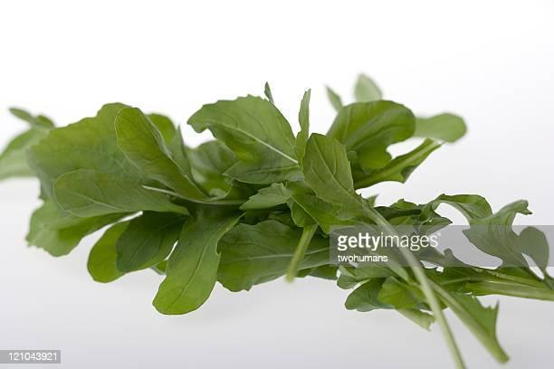 Leafy arugula