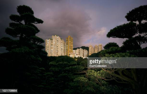 Leafy hillside with large apartment buildings in Hong Kong