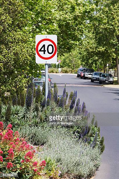 leafy street,speed sign,