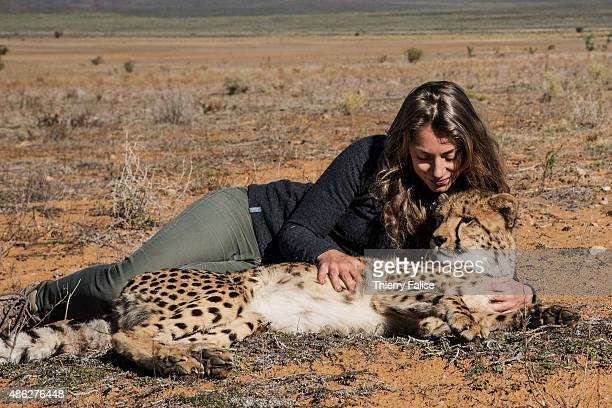 Leah Brousse a French woman runs the 'Western Cape cheetah conservation' project at Inverdoorn Game Reserve The project takes care of African cheetah...