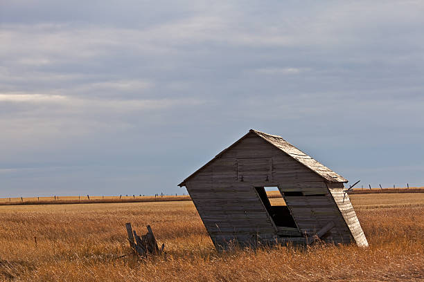 leaning shed photos com