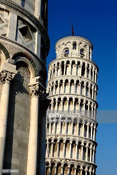 leaning tower of pisa - torre di pisa foto e immagini stock