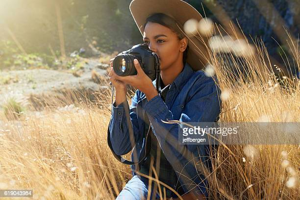 learn to see the light - drooping stock photos and pictures