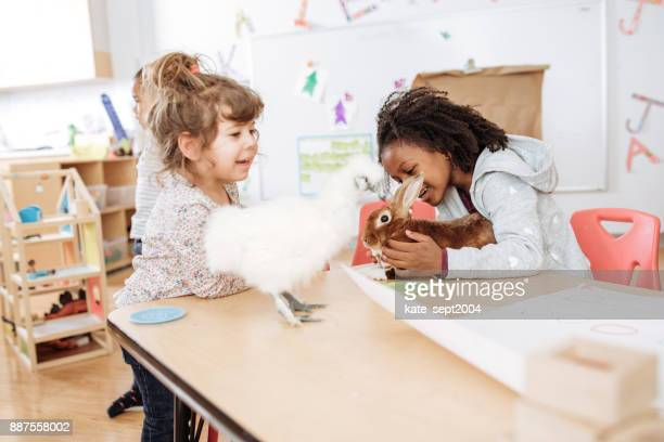 Learning about birds and rabbits