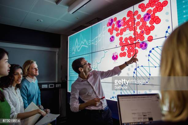 learning about dna phenotyping - medical stock photos and pictures
