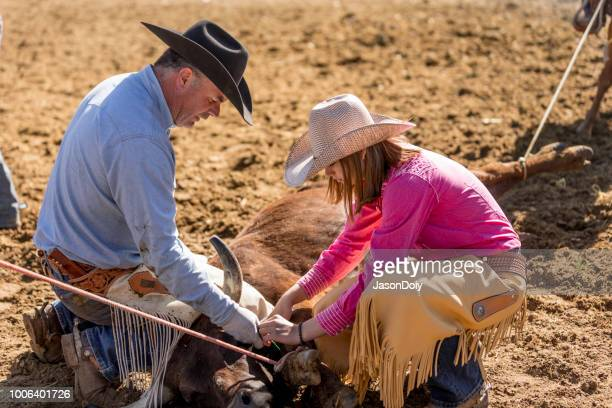 learning the ropes: young cowgirl learns farm life on ranch - livestock branding stock photos and pictures