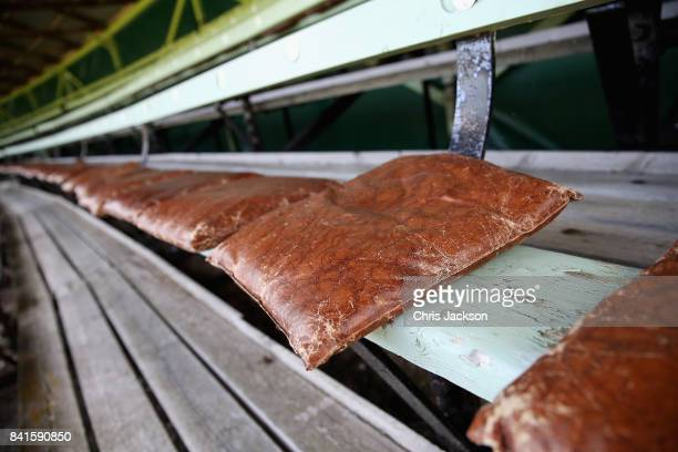 Leather cushions for spectators are seen ahead of the 2017 Braemar Gathering at The Princess Royal and Duke of Fife Memorial Park on September 1 2017...