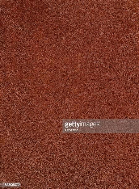 Leder-Ziege (65 Mp