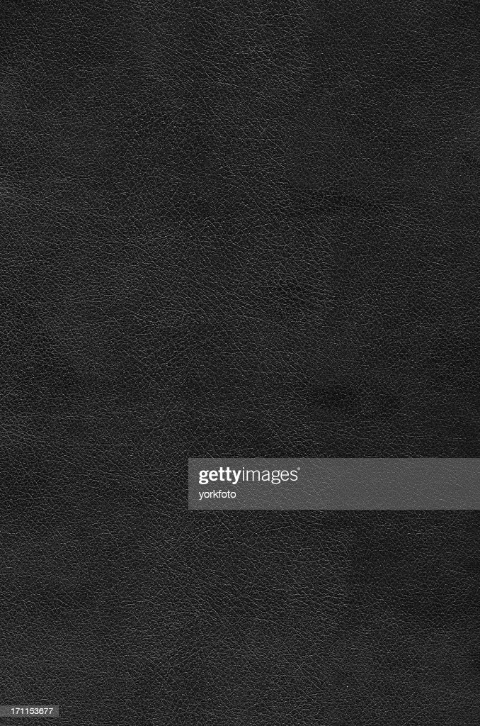 Leather : Stock Photo