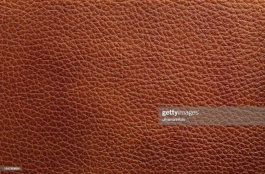 Leather texture : Stock Photo