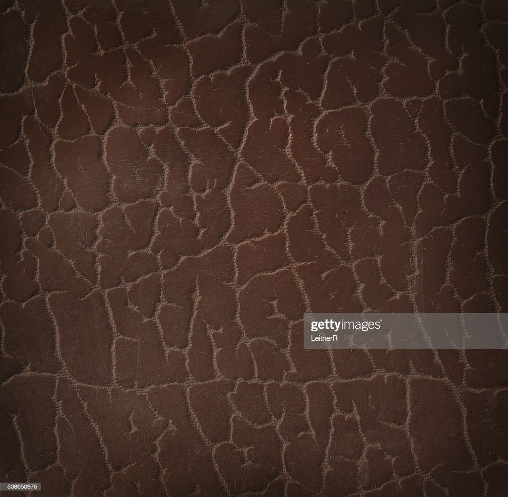 Leather texture : Stock Photo