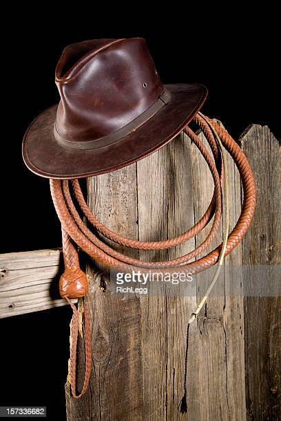 bullwhip stock photos and pictures getty images