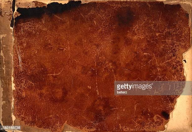 leathery fundo - queimadura pele imagens e fotografias de stock