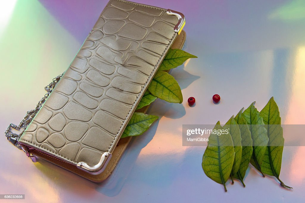 Leaves in your wallet : Stock Photo