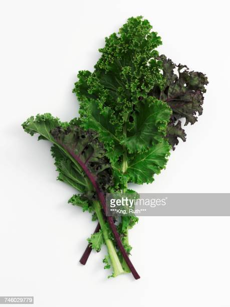 leaves of kale - kale stock photos and pictures