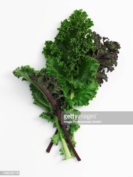 Leaves of kale