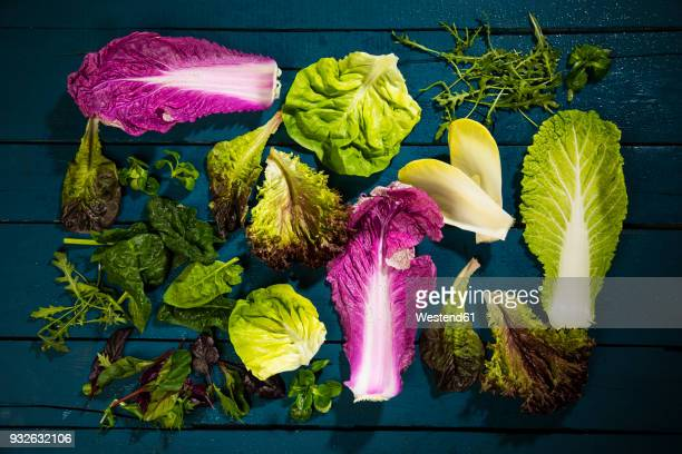 Leaves of various sorts of salads