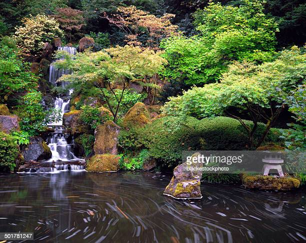 Leaves swirling in pond at Japanese Garden with waterfall