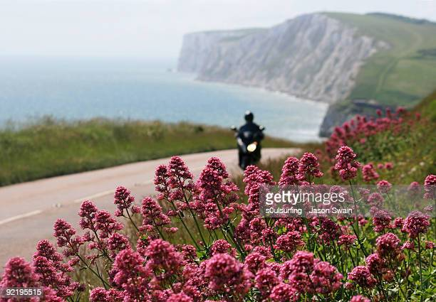 leaving freshwater bay via the military road - freshwater bay isle of wight ストックフォトと画像