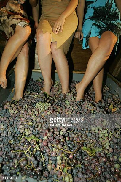 Lebanese women crush grapes with their feet 08 October 2004 on a demonstration carriage at the Beirut Marina private port which is hosting the first...