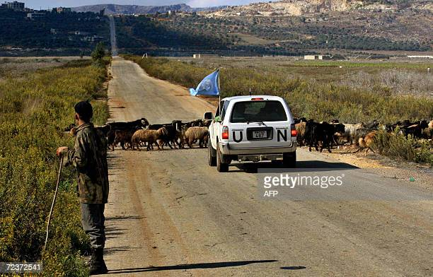 A UN vehicle waits for a herd of sheep to cross in the village of Kafar Kila in south Lebanon 03 November 2006 Spanish UN contingent completed its...