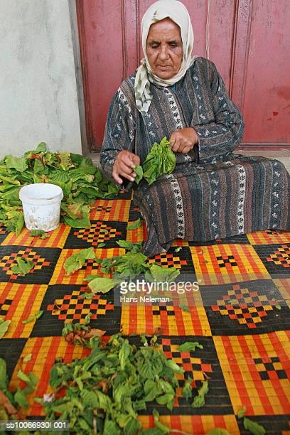 Lebanon, Beirut, Woman holding tobacco leaf