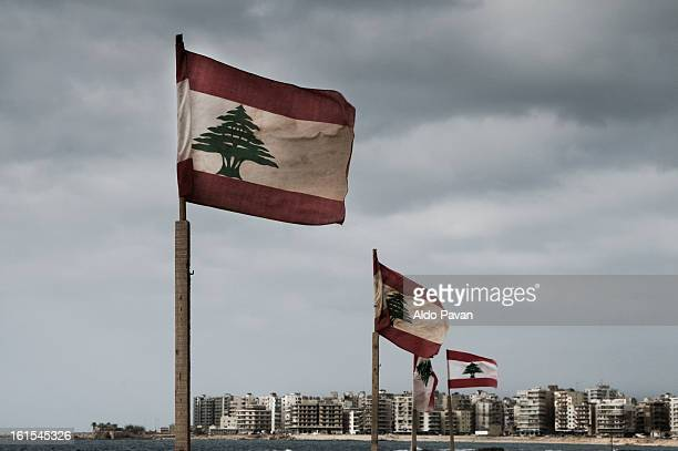 lebanon, tripoli, el mina - líbano fotografías e imágenes de stock