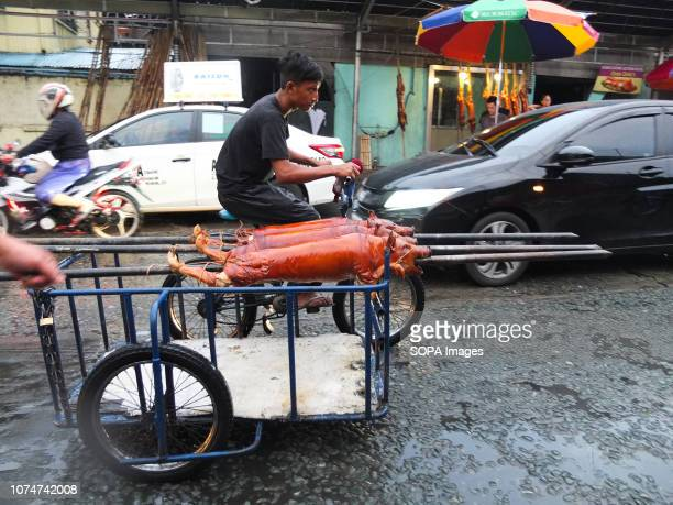 Lechons being transported by a side car The Lechon will be then for sale as a traditional food for the Christmas festivity