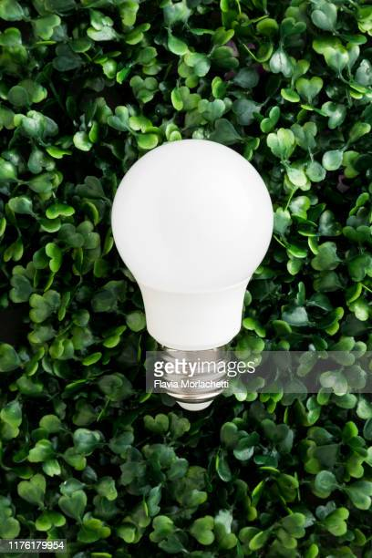 led lightbulb - energy efficient lightbulb stock pictures, royalty-free photos & images