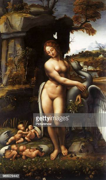 Leda and the Swan da Vinci Leonardo